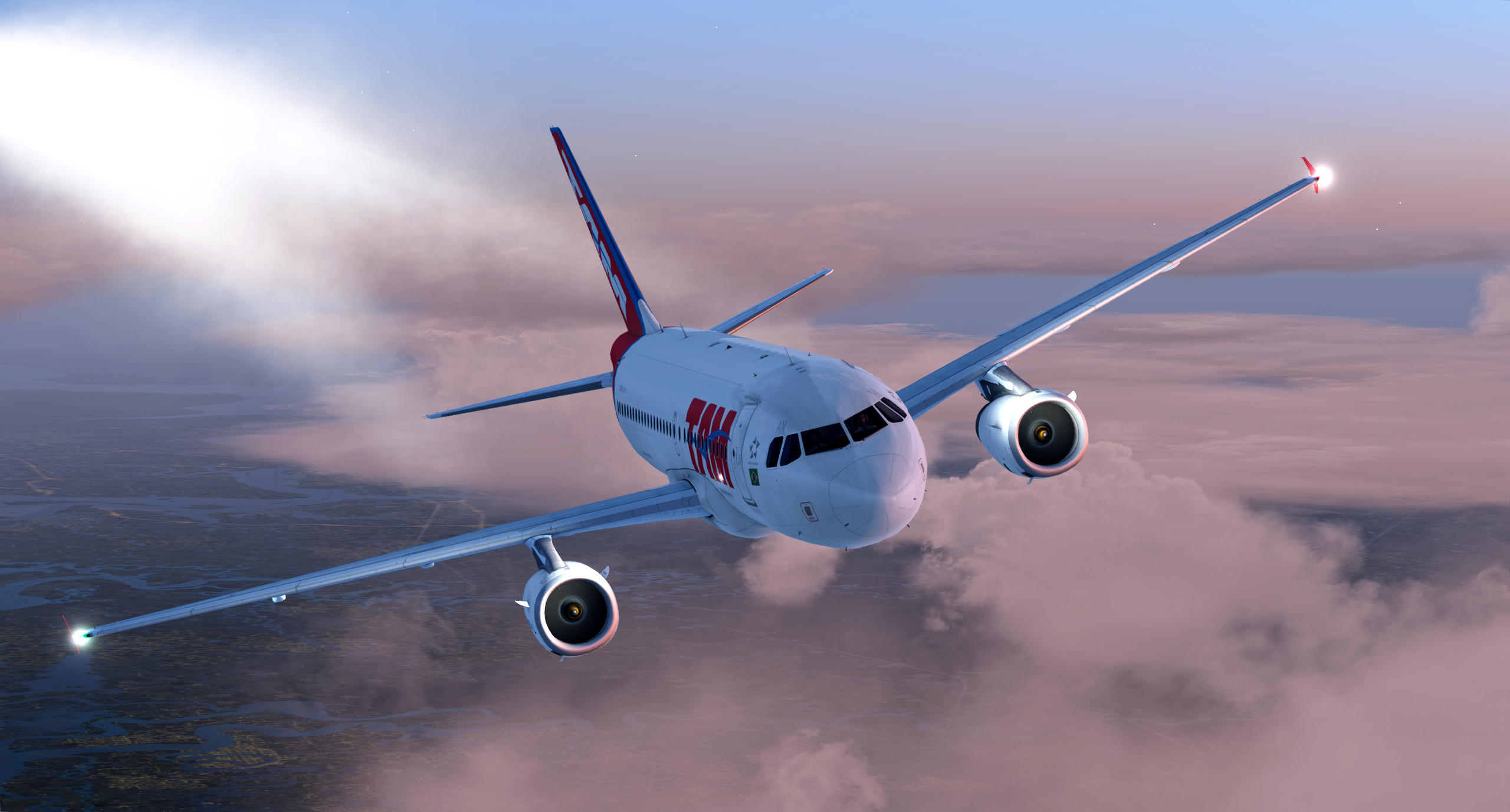 Buy and Download Airbus A318/A319 Professional for FSX and P3D