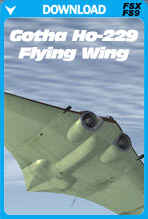 Gotha Ho-229 Flying Wing