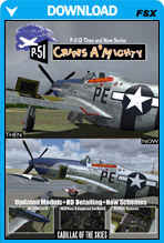 Mustang P-51D Then And Now Series - Cripes A Mighty