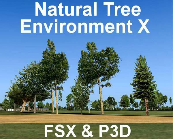 Natural Tree Environment X
