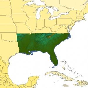 TopoSim - USA - Southeast Region