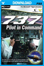 737 Pilot In Command