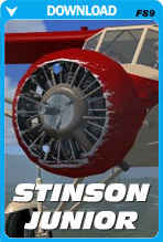 Stinson Junior (FS2004)