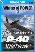 Accu-Sim for the Wings of Power 3 P-40
