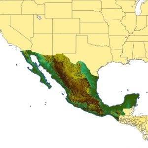 TopoSim - Mexico