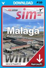 Malaga professional