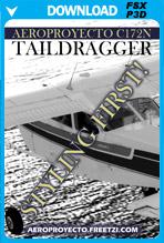 Cessna C172N Taildragger